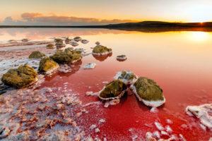 Koyashske Lake in Ukraine