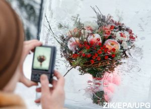 Kiev Festivals on New Year 2018