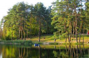 Goloseevsykiy park in Kiev