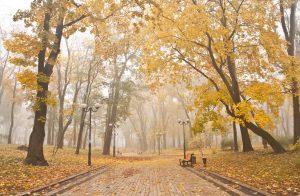 mariinsky park in kiev