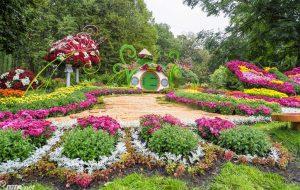 Beautiful nature of Ukraine