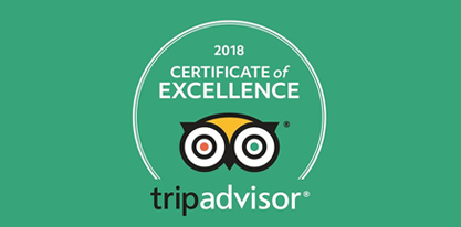 Private Tour guide on Tripadvisor